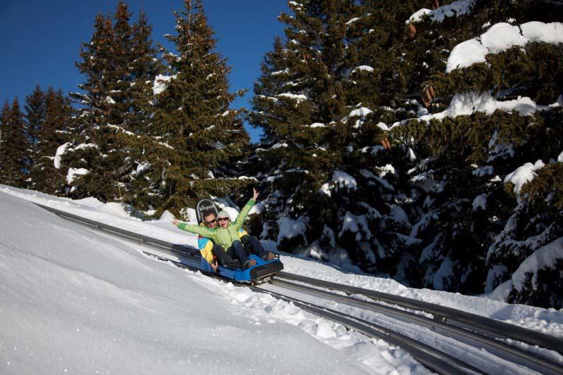 Mountain Twister les Saisies luge été / hiver